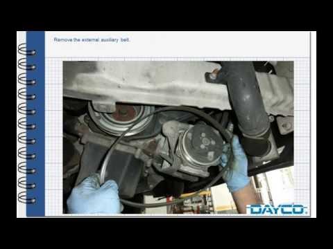DAYCO KTB339 Kit Distribuzione