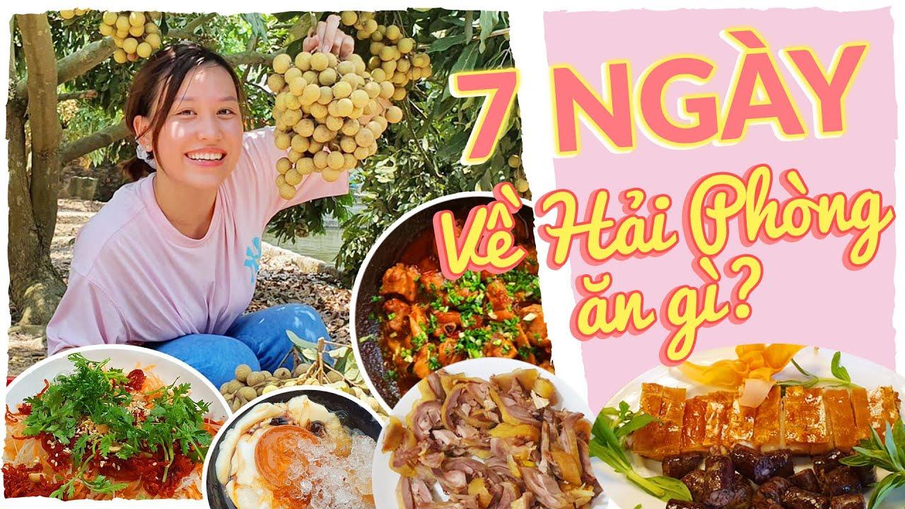 Foodtour 7 NGÀY ĂN Ở HẢI PHÒNG 🍳 | Ăn mãi không hết 50K là có thật 🤪