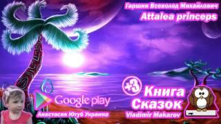 Книга Сказок Аttalea princeps Гаршин Всеволод Михайлович  Детские Аудио Сказки Онлайн