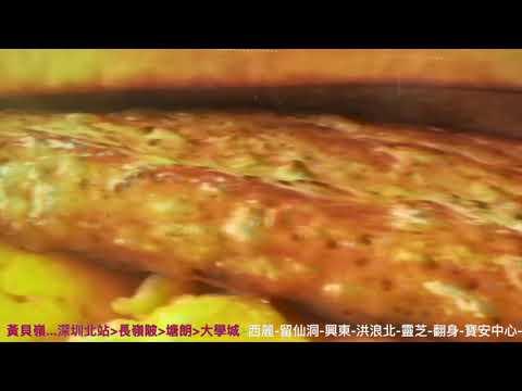 深圳地鐵5號線中車長客列車5452行走片段 深圳北至前海灣