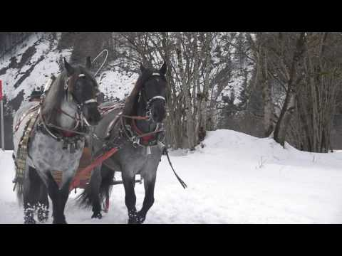 2 Pferdeschlittengala Abtenau 2017