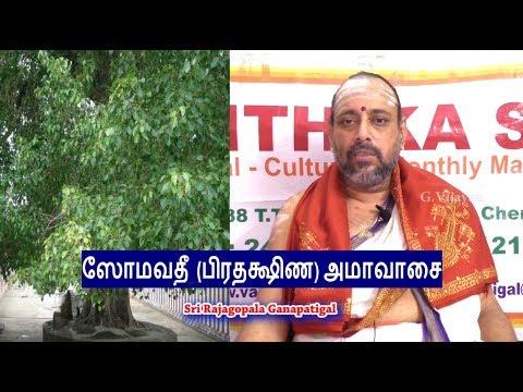 ஸோமவதீ  பிரதக்ஷிண அமாவாசை |  Somvati Amavasya | அரசம பிரதக்ஷிணம்  |  Rajagopala Ganapatigal