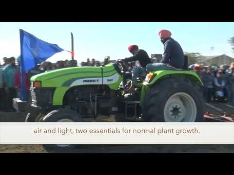 2018 Punjab mini-Olympics: Rural Games Tractor Plowing Competition