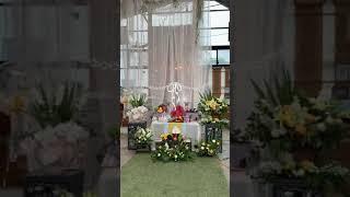 [돌상]청주꽃집 채희수플라워 돌상데코 생일데코 돌잔치