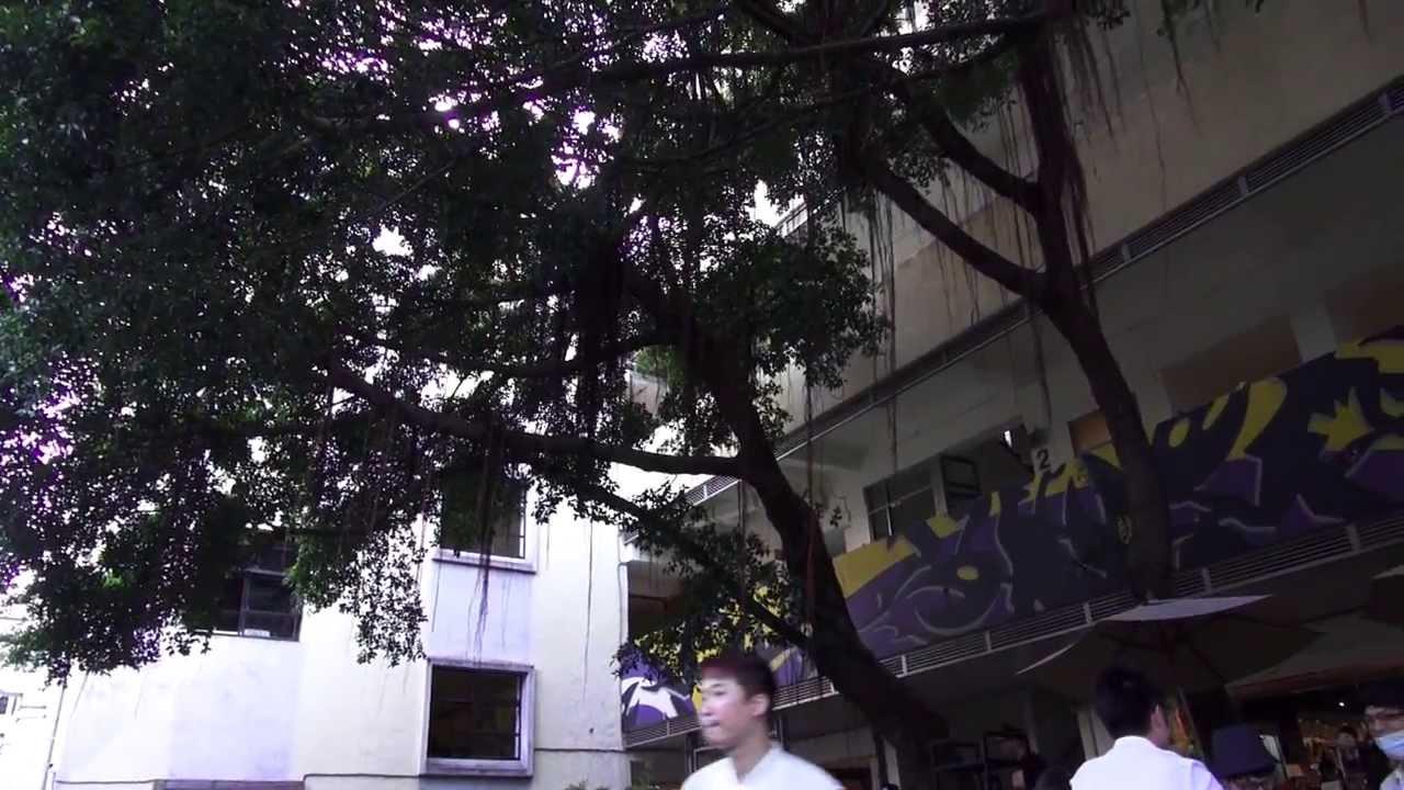 臺北國際藝術村 冬季開放工作室 - YouTube