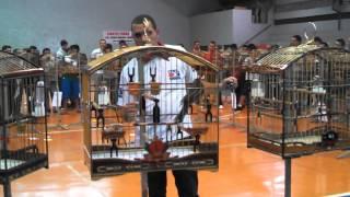 Repeat youtube video TRINCA  FERRO LEGENDÁRIO EM LONDRINA 2013