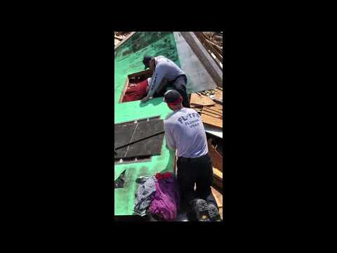 Brody - Gainesville Fire Fighters Rescue Bulldog Under Rubble In The Bahamas