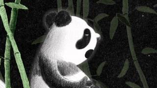 Chengdu Could Not, Would Not Fall Asleep - Book Trailer by Barney Saltzberg