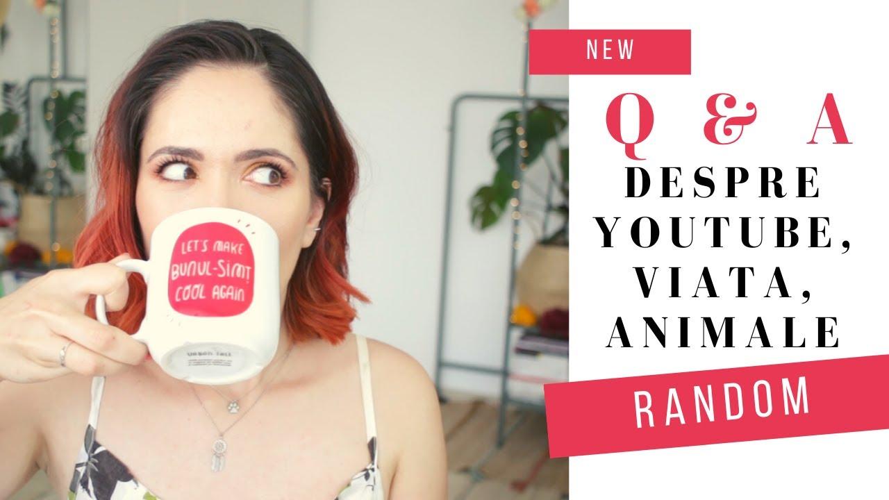 Q & A: despre youtube, viata si animale