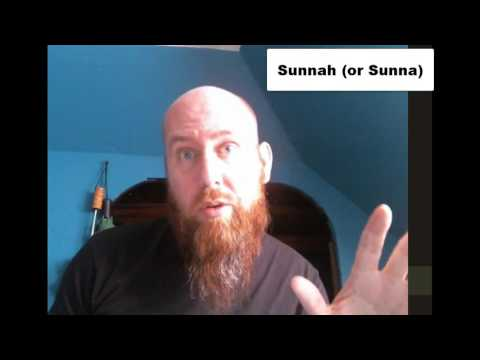 The Umayyad Dynasty, The Fitnas, and the Sunni-Shia Schism