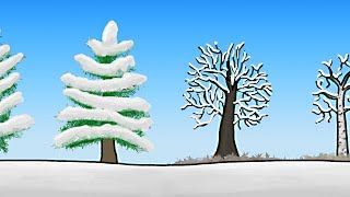 Repeat youtube video How do Trees Survive Winter?