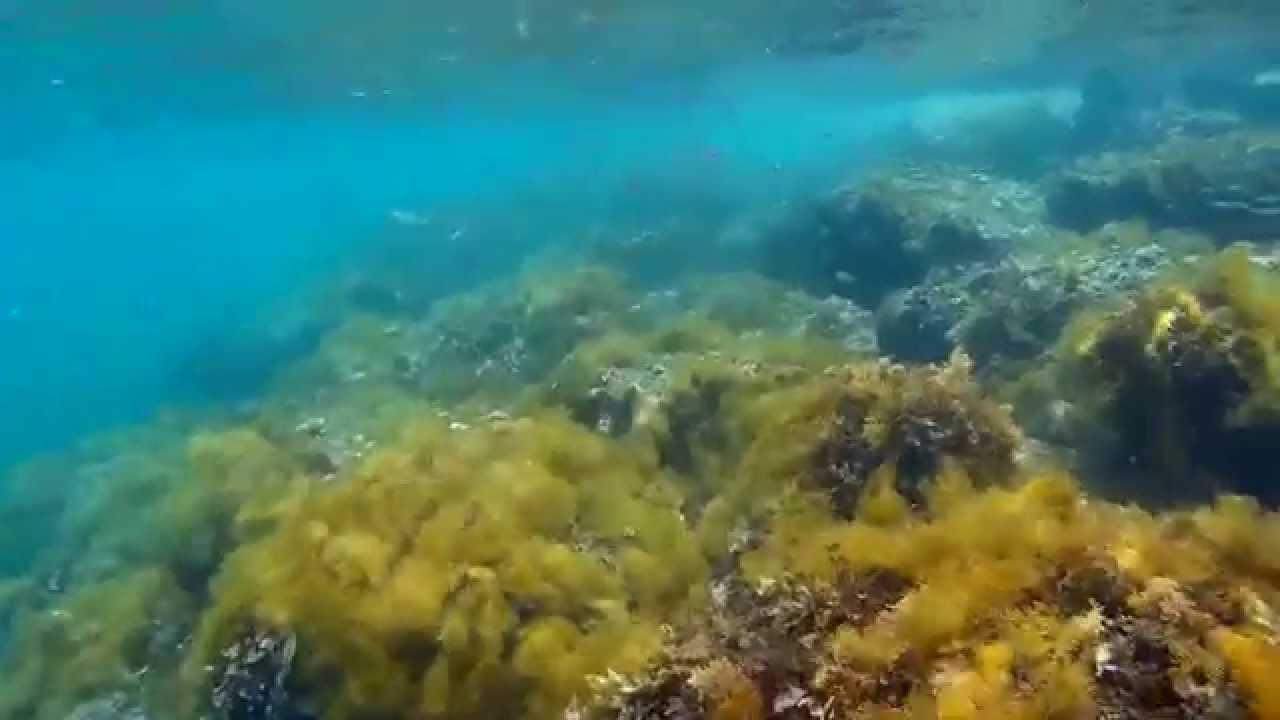 Cyprus Oroklini underwater