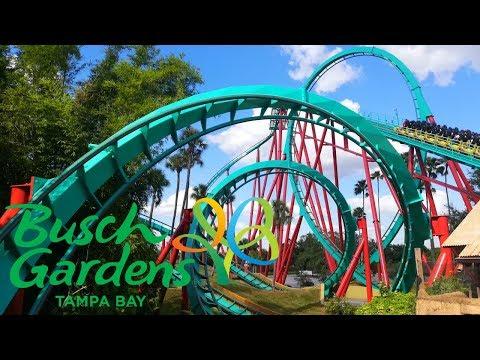 Busch Gardens Tampa Bay Vlog October 2019