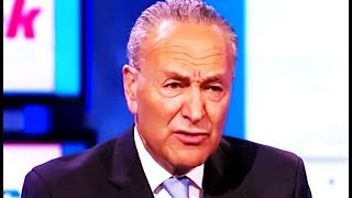 Chuck Schumer: Single Payer Is On the Table, Probably, Along With Everything Else Imaginable