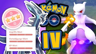 Das ultimative IV-Video! Darum sind IV (un)wichtig | Pokémon GO Deutsch #1566