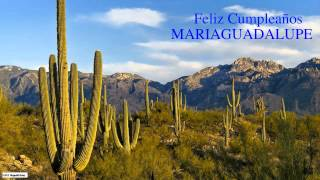 MariaGuadalupe   Nature & Naturaleza - Happy Birthday