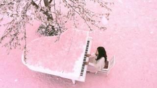 2012年2月15日発売 2ndシングル『さくら ~とどかぬ想い~』 ・フジテレ...
