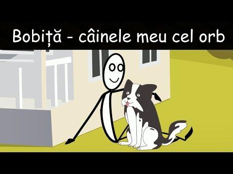 Bobiță - Câinele Meu Cel Orb