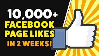 GET 10,000 FACEBOOK PAGE LIKES IN 2 WEEKS! Grow Facebook Page with Cheap Facebook Ads