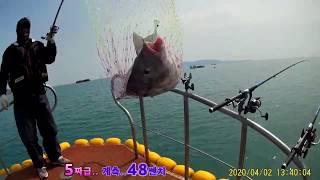 바다낚시 대물감성돔 (…
