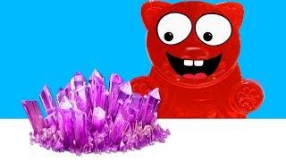 Wir züchten Kristalle für Lucky Bär - DiY