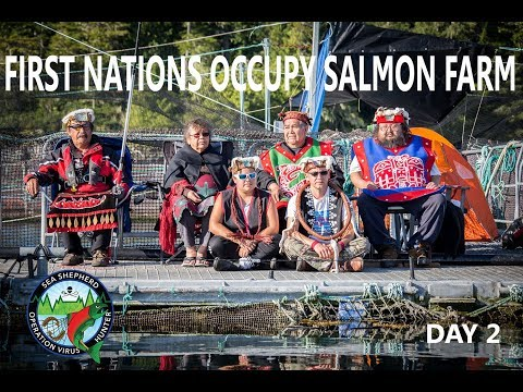 Op Virus Hunter: First Nations Occupy Salmon Farm Day 2