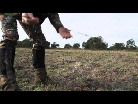 Jim Shockeys Hunting Adventures - Hog Deer