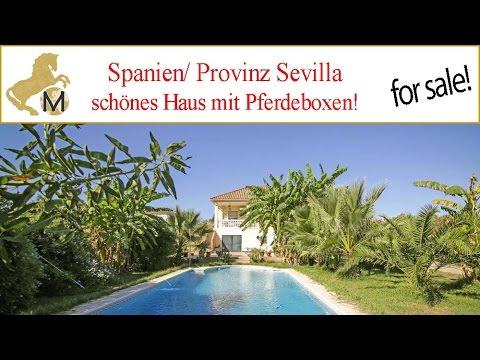 Andalusien/ Provinz Sevilla/ La Puebla del Rio, Haus mit Pferdeboxen nahe Coto Donana zu verkaufen