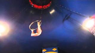 несчастный случай в цирке (Бердянск)