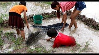 Amazing beautiful girl Fishing in Cambodia - How to Fishing at Battambang - By New York ( part 078)