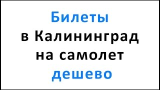 видео Авиабилеты в Калининград