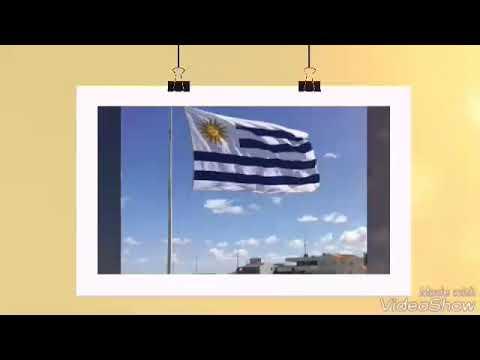 DIARIO DE UN VIAJE MONTEVIDEO  /URUGUAY PARTE 1