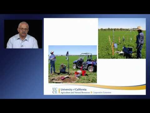 Surface irrigation management under drought