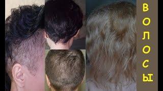 История моих волос за последний год