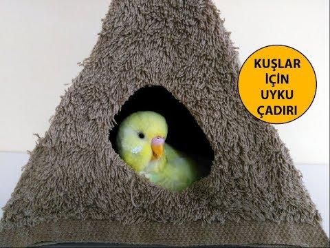 Kuşlar İçin Uyku Çadırı Yapımı
