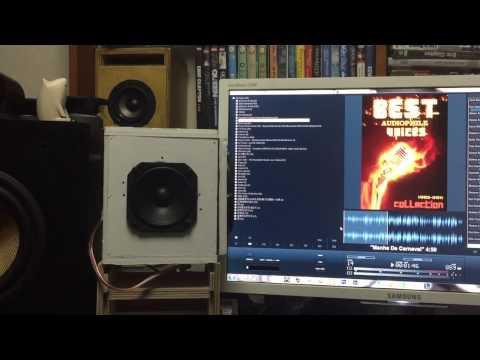DIY Speaker Test - Tymphany TC9FD18 -08