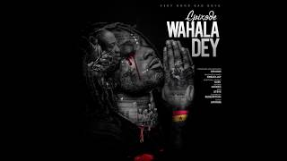 Epixode  - Wahala Dey (Official lyrics video).mp3