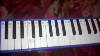 Cara memainkan lagu burung kakak tua menggunakan pianika