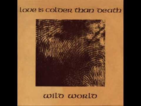 Love Is Colder Than Death - Wild World