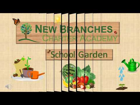 New Branches Charter Academy 2018
