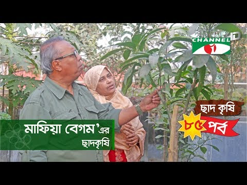 Rooftop farming | EPISODE 85 | HD | Shykh Seraj | Channel i | Roof Gardening | ছাদকৃষি |