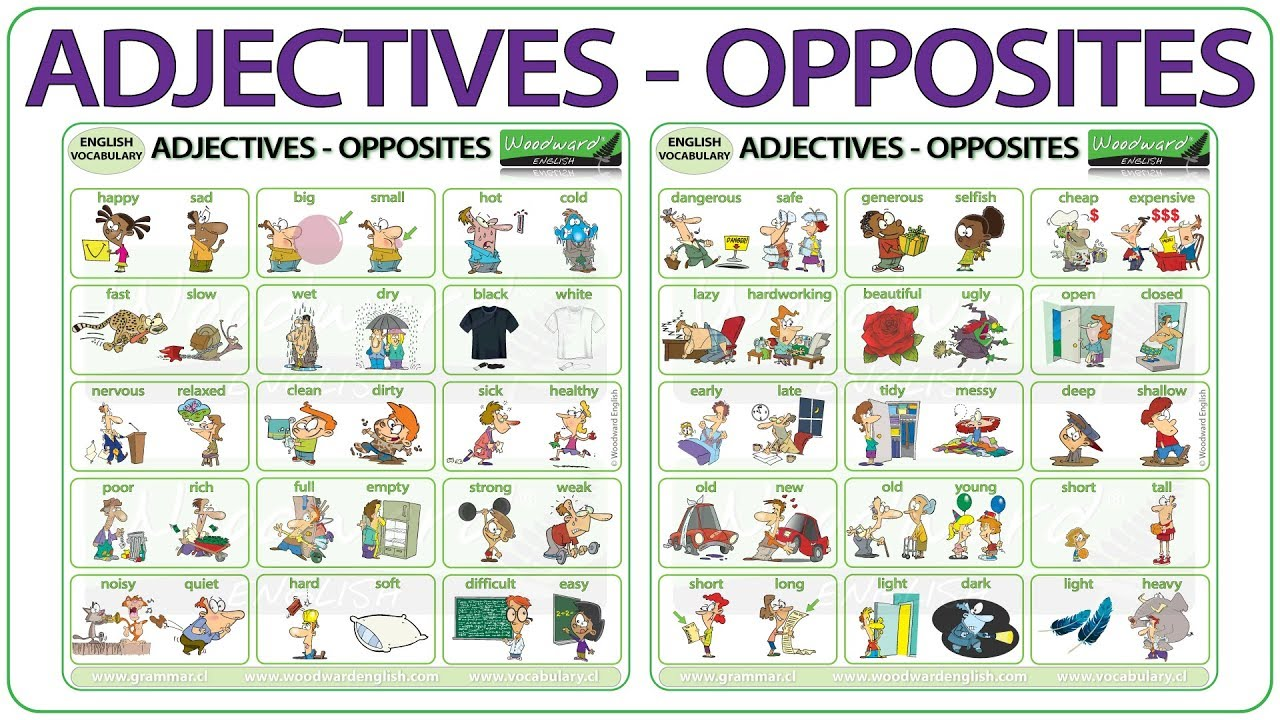 Adjectives Opposites In English Youtube