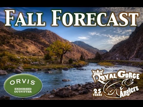 Arkansas River Fly Fishing Video Report Royal Gorge Anglers