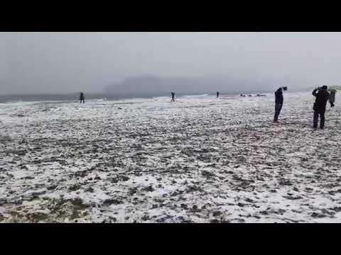 Neve in spiaggia a Marina di Carrara