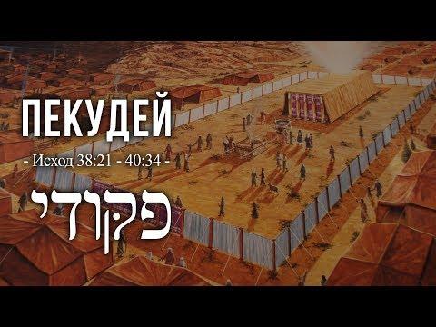 """28.03.2020 """"Пекудей"""" 5780 Валентин Шеховцов"""