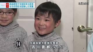 夏休みの自由研究で、セミが羽化する瞬間を記録した神戸の小学生がいま...