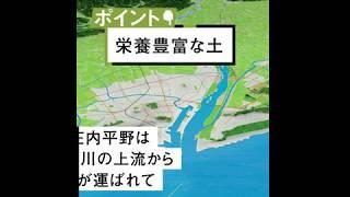 小学5年生 社会 地形と気候を生かす 庄内平野のお米のお話です。 スタデ...