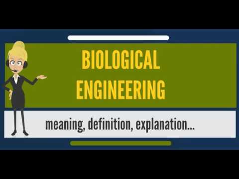 What is BIOLOGICAL ENGINEERING? What does BIOLOGICAL ENGINEERING mean?