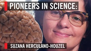 The woman who turns brains into soup: Suzana Herculano-Houzel