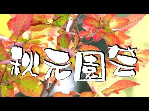 里に吹く風 : 秋元園芸